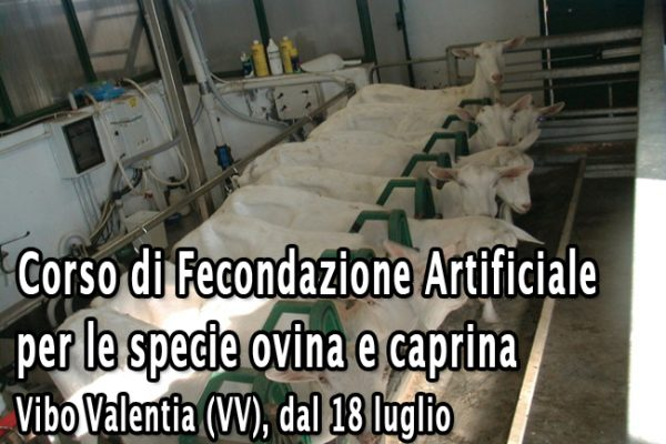FAOviCaprina_rev01