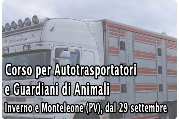 16048_Trasportatori